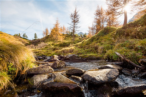 Herbststimmung am Berg in Gastein